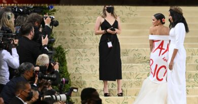 A.O.C.'s Met Gala Dress and the Aim of Protest Fashion – The New Yorker